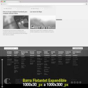 barra-flotante-expandible-1000x30-300