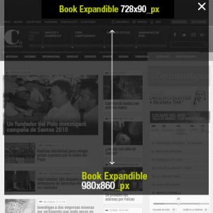 book-expandible